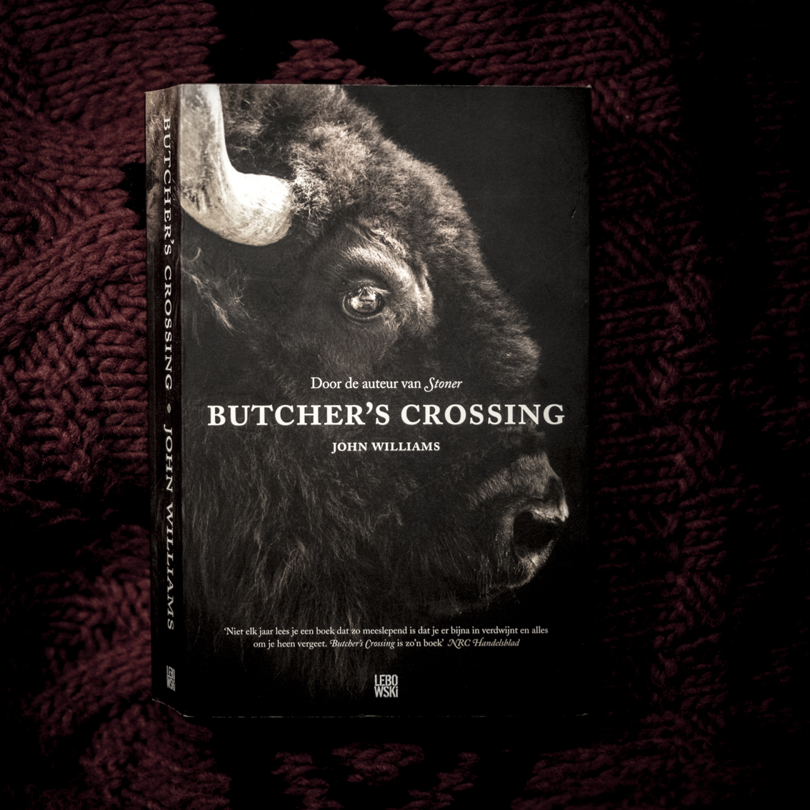 John Williams, Butcher's Crossing.   Bison hunters get stuck in the snow, in the cold misery. This western novel is not a happy story with a happy end, but what a story! The novel is hard and ruthless, as a reader you sink with your boots away in the mud. If you want to know how it feels to freeze on a horse, run to the bookstore. The book was published in 1960 but recently reissued. The author John Williams died in 1994.