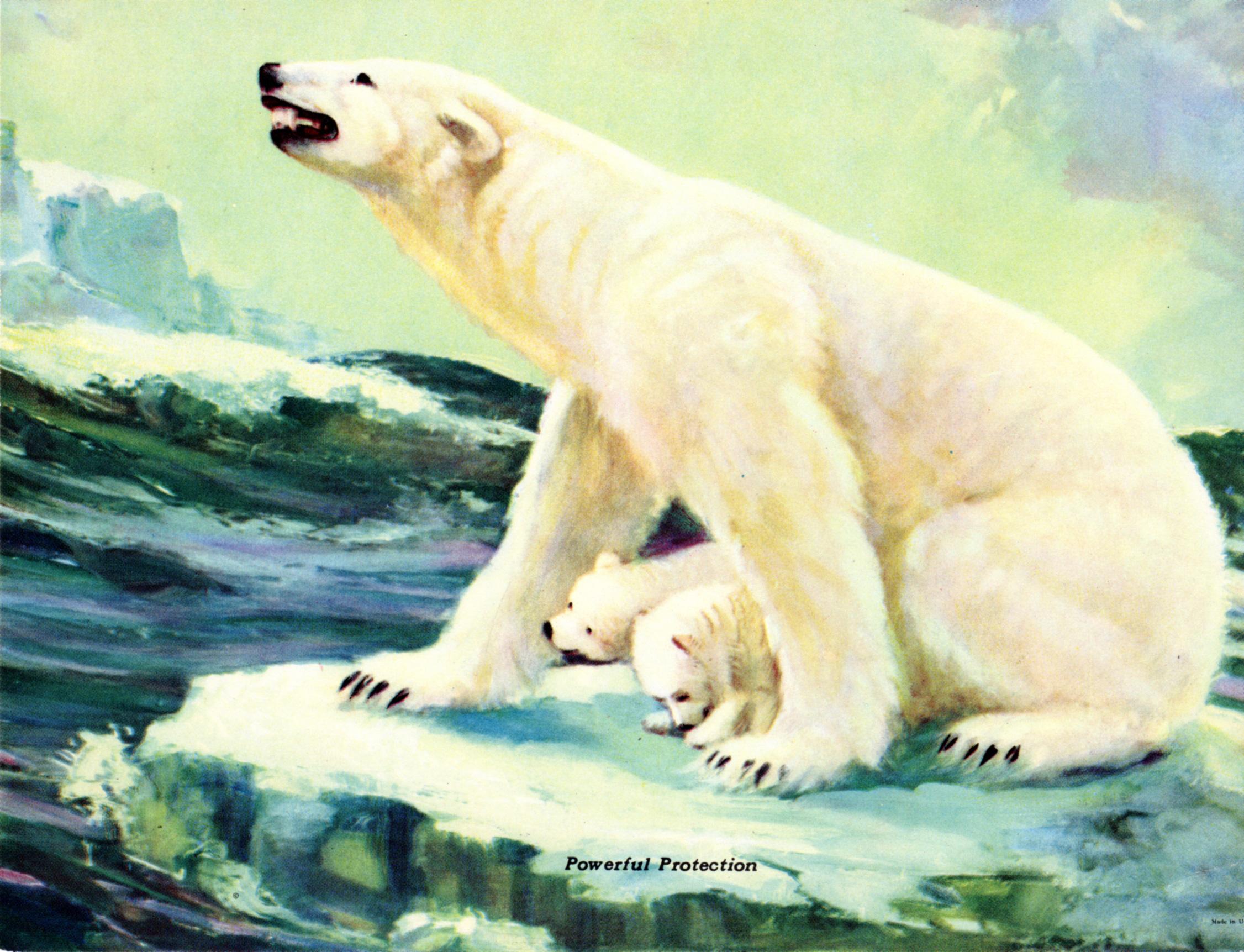 Miscellaneous Domestic & Wild Animals