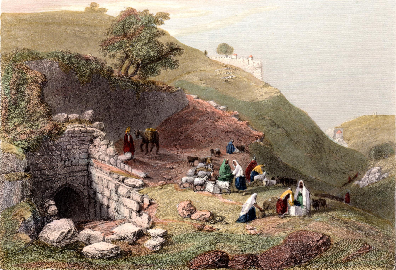 Bartlett, Wm Henry / Christian in Palestine