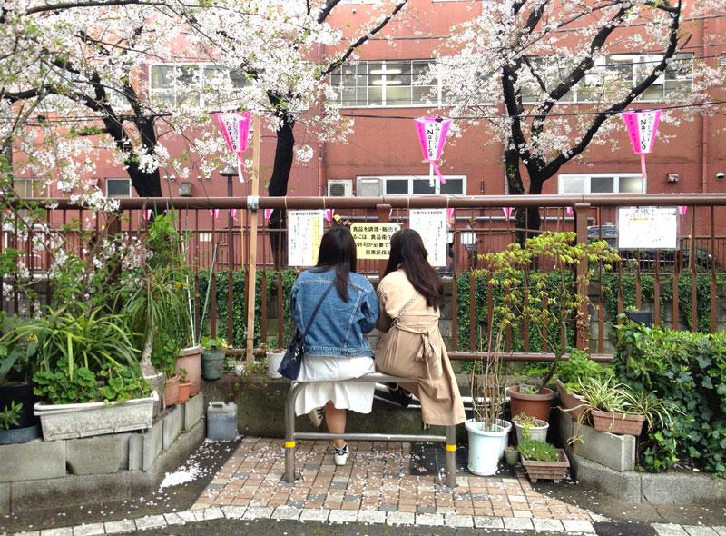 naka-meguro-japan.jpg