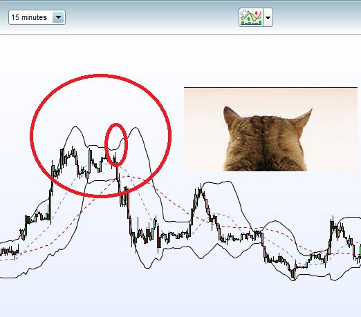 arabica cat ears.png