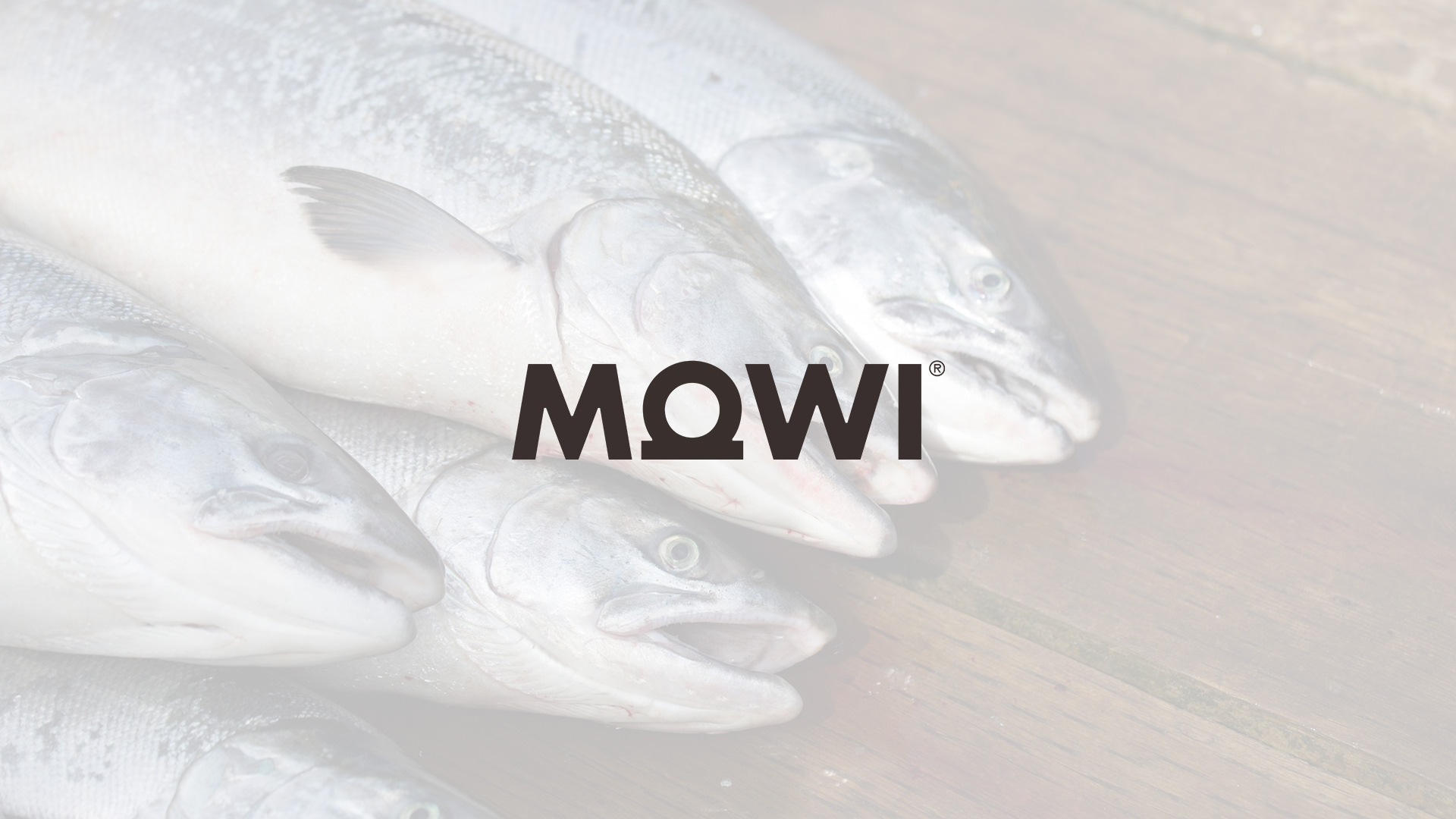 atlantic-salmon-antitrust-class-action.jpg
