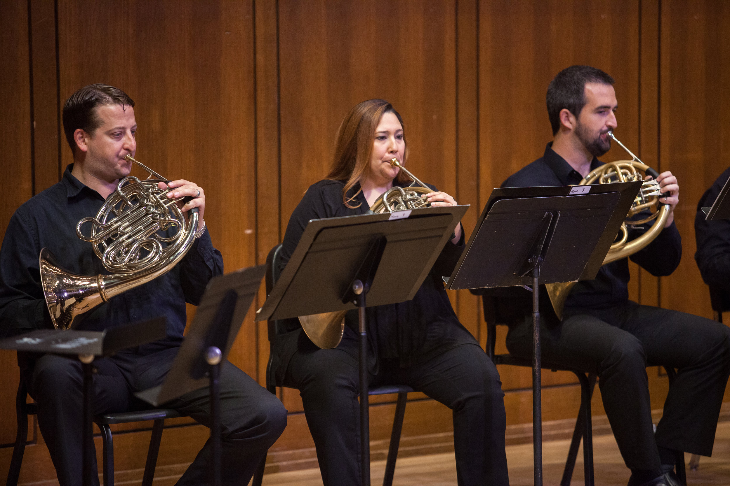 Members of the Round Rock Symphony.