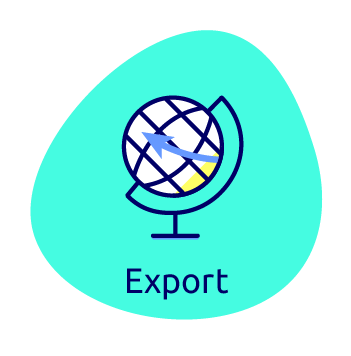 Waissels export icon