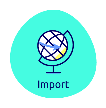 Waissels-import icon