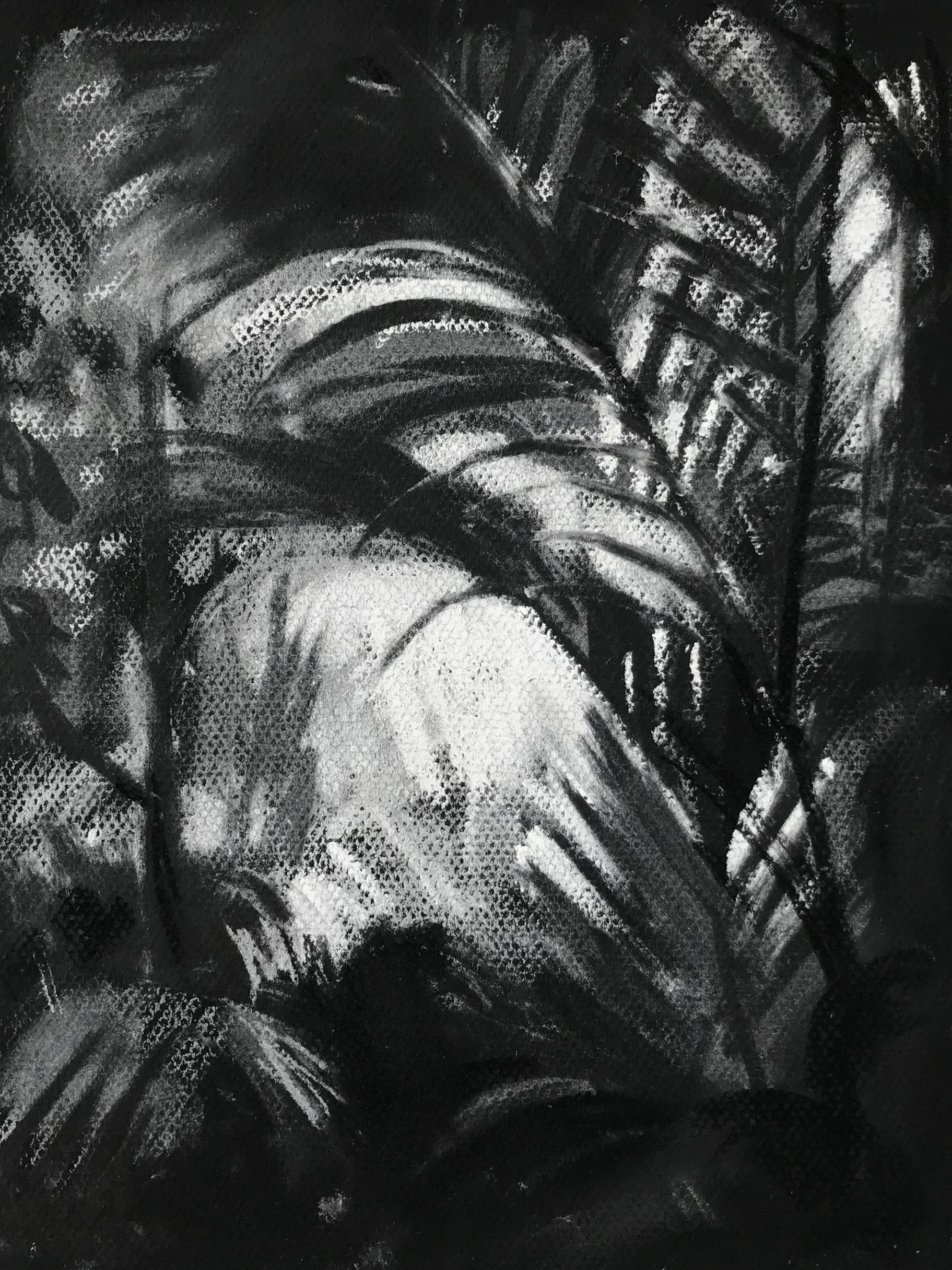 In the Palm House, Kew - 21 x 29cm, pastel on black paper. Framed £375