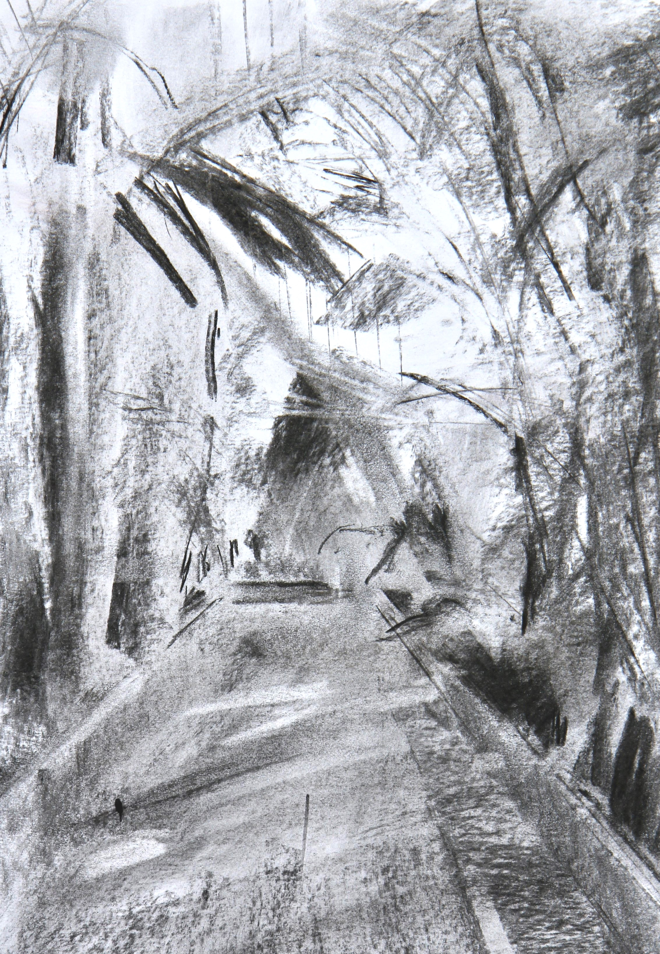 Palm House sketch - 25 x 35cm, charcoal on paper. Mounted on acid-free board £215