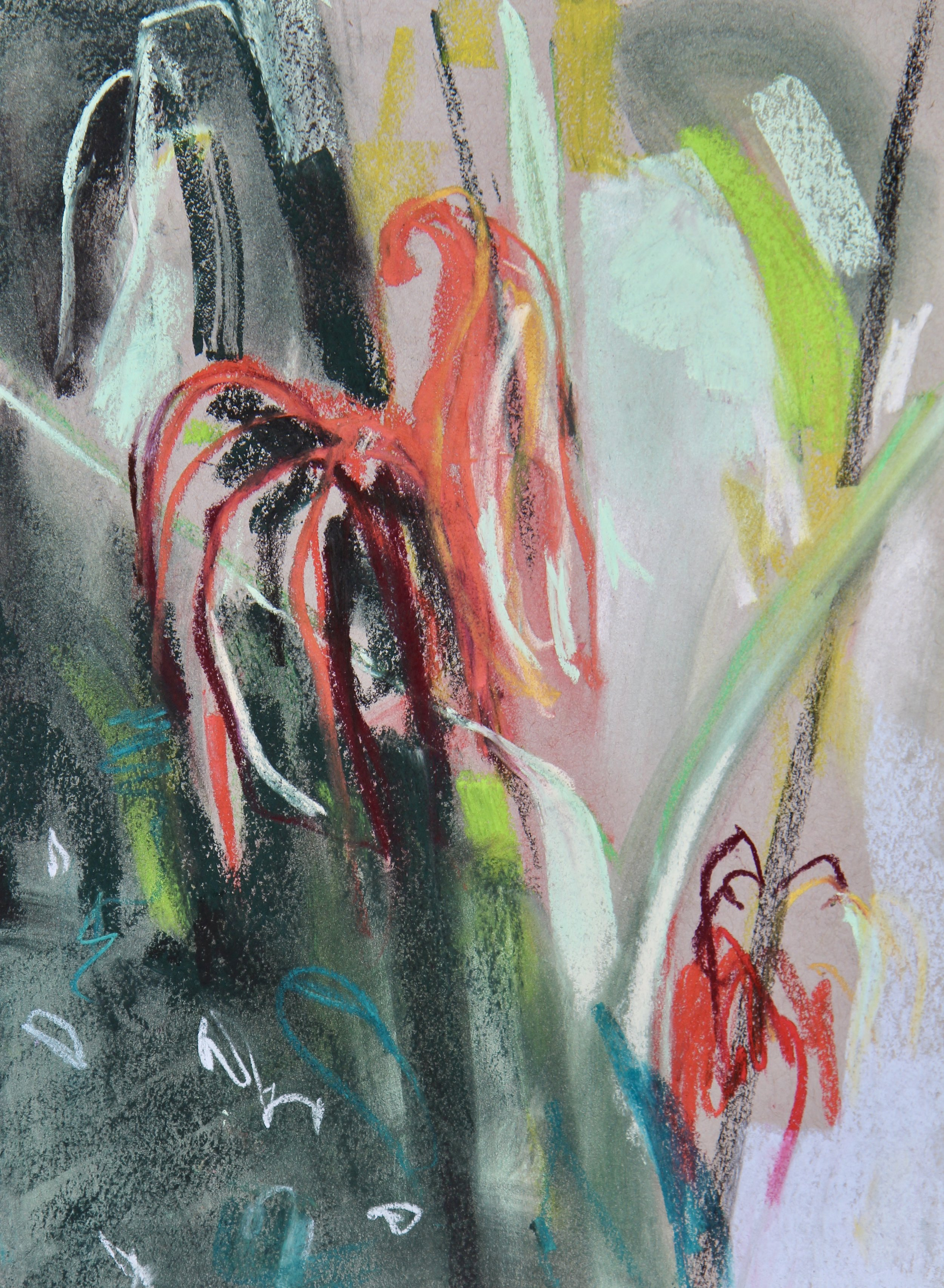 plant study 3 - 21 x 29cm, pastels on grey paper. Mounted on acid-free board £125