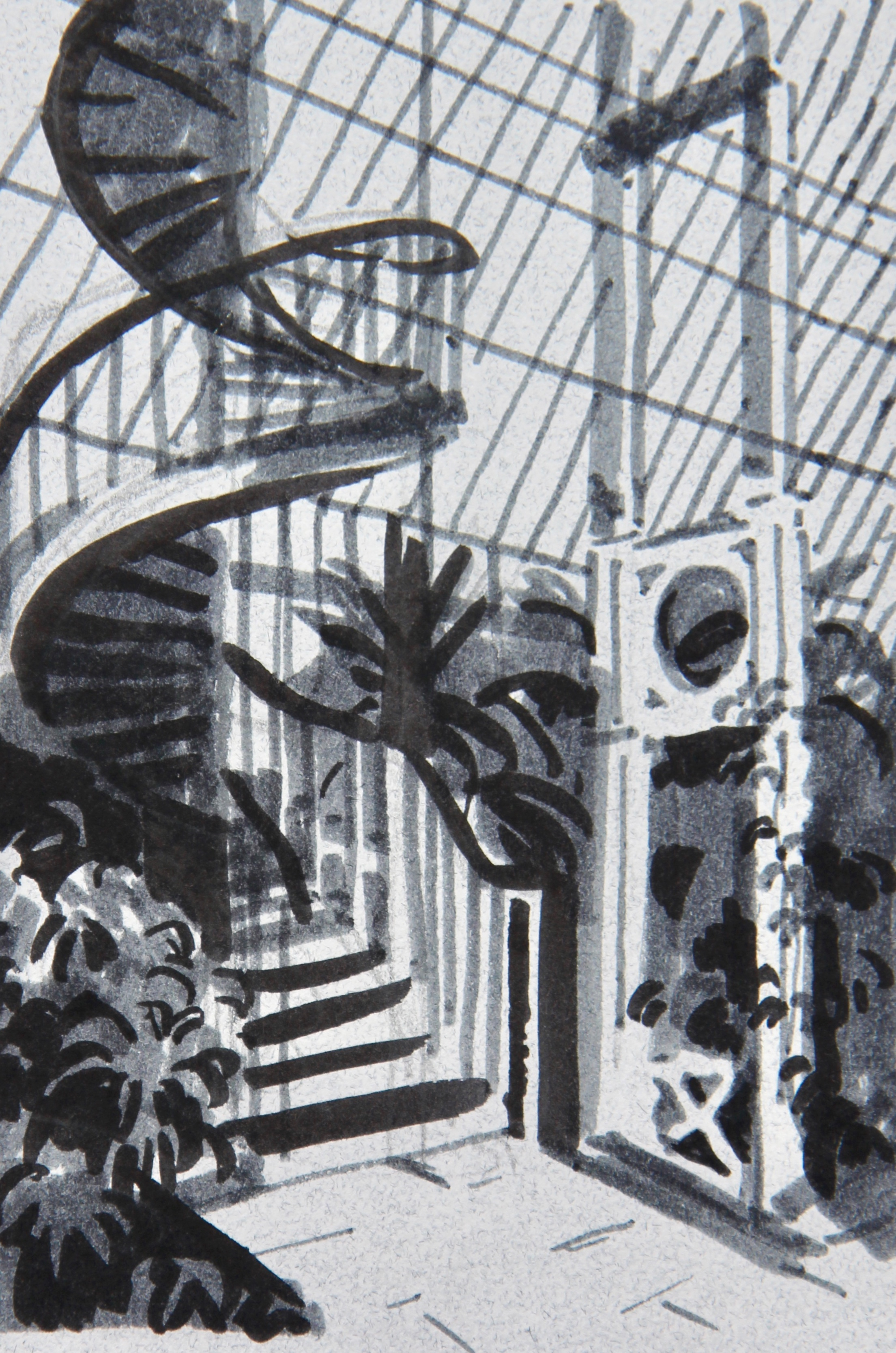 Spiral Staircase, Palm House - 10 x 14cm, pens on grey paper. Mounted on acid-free board £250