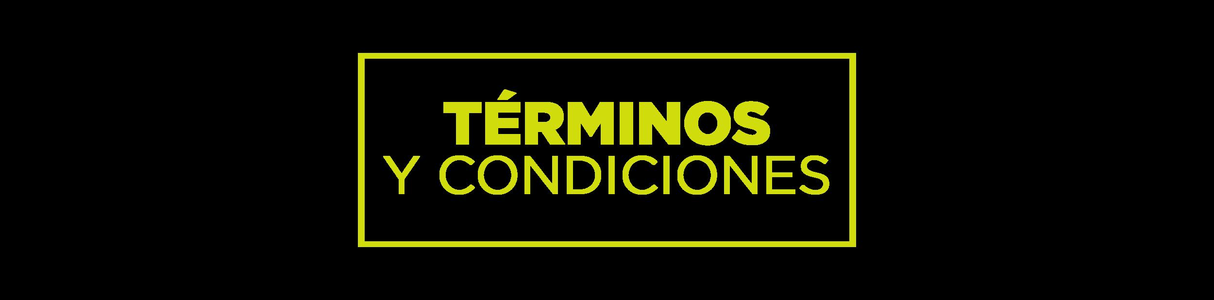 TERMINOS-13.png
