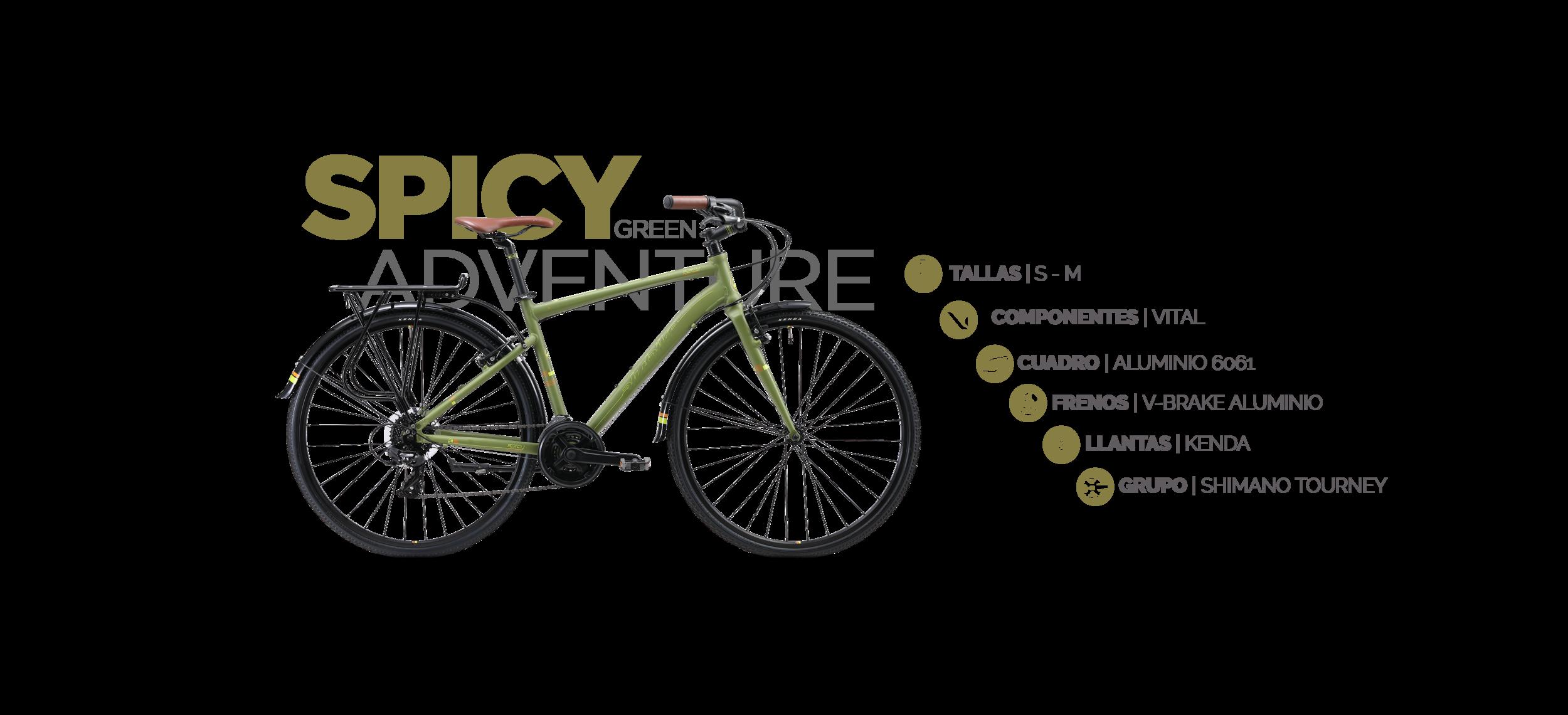 Bicicleta_Fondo_urbano.png