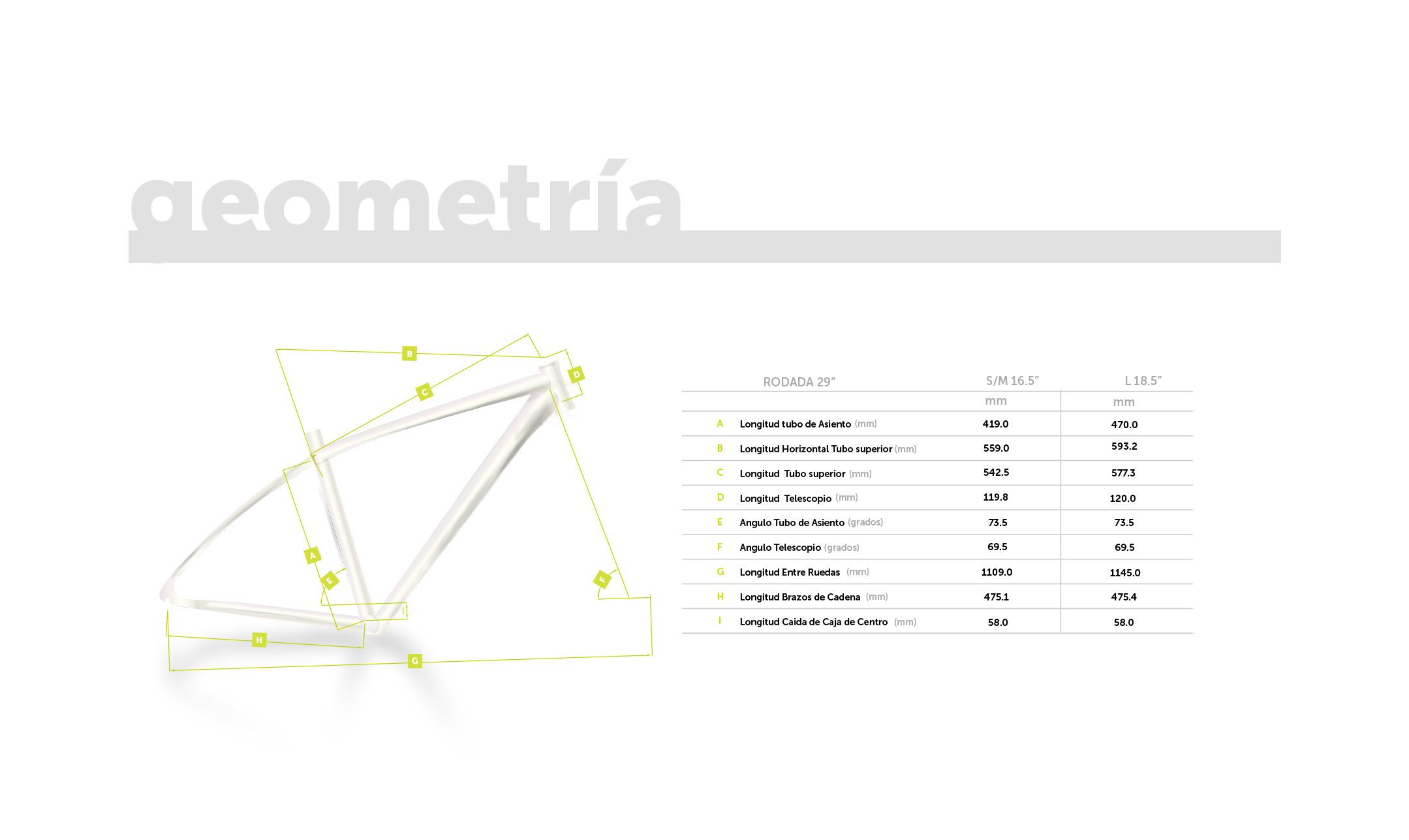 geometría.png