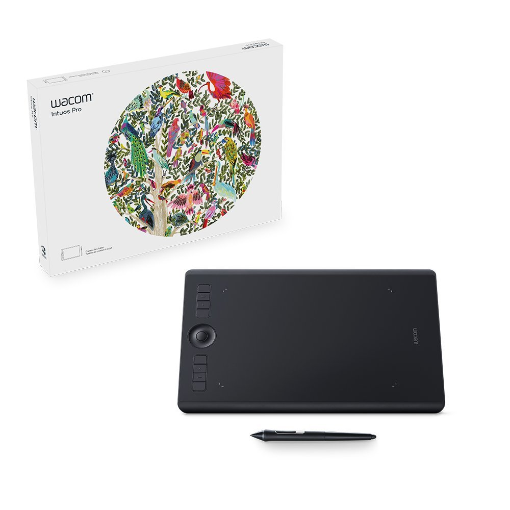 Wacom Intuos Pro Drawing Tablet