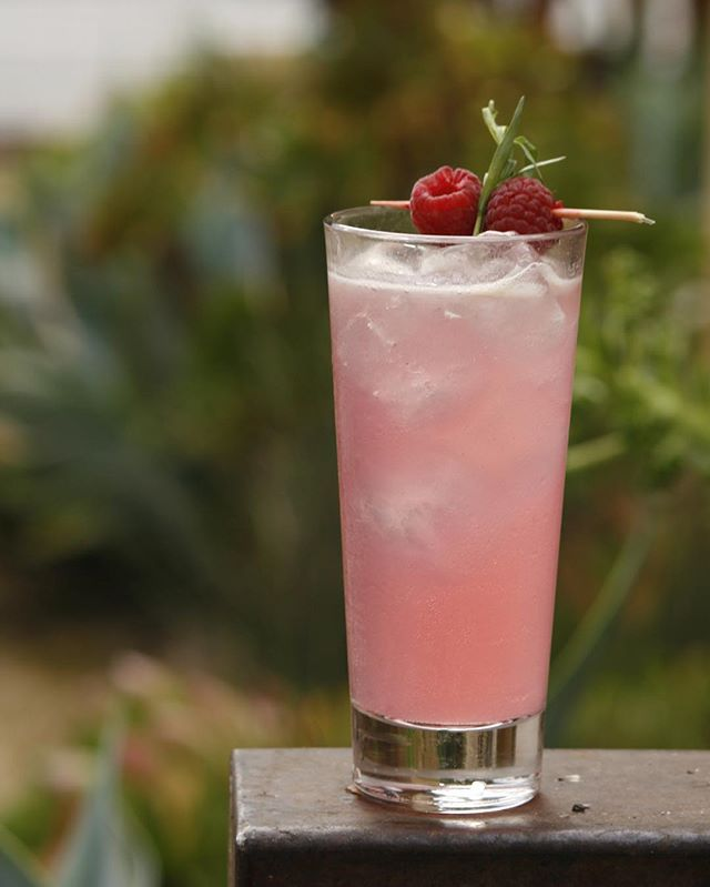 *Don't Think Twice* . . Tanqueray 10, raspberry, elderflower, lemon, fennel bitters, tonic . . #craftcocktails #libations #tanqueray #fennelbitters #spring #losgatos #siliconvalley #jackrose