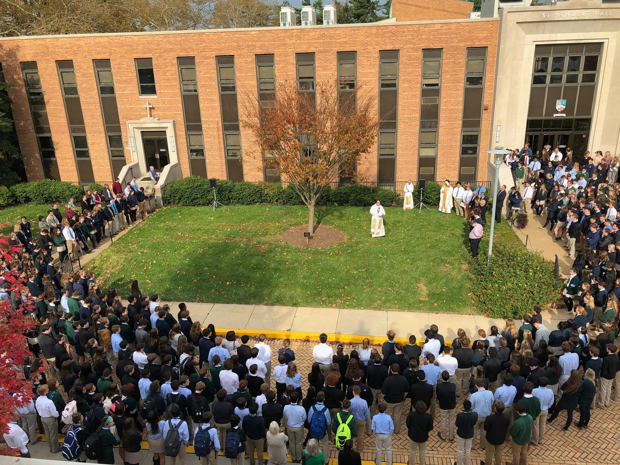 Dedication of the Zelkova Tree in honor of Anthony