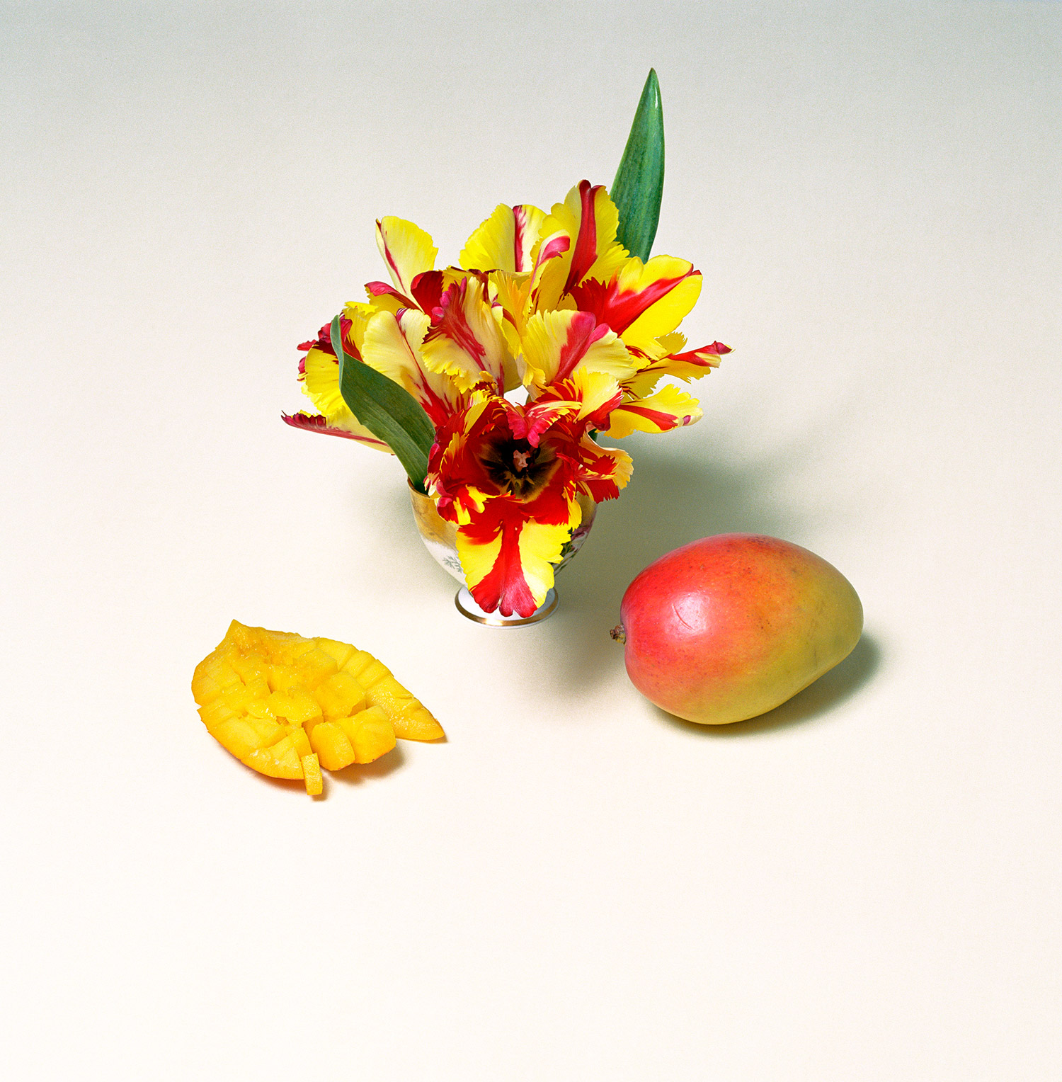 Fruit of the Month   2007, 35″ x 35″, lambda print