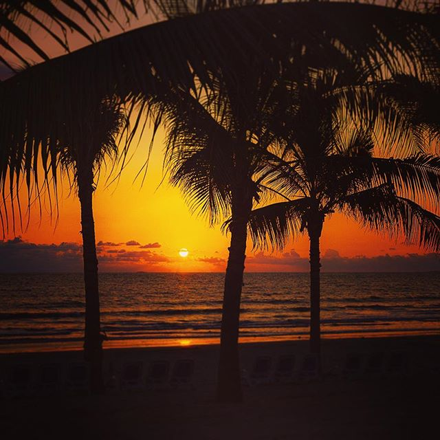 You can always count on Puerto Vallarta to provide beautiful sunsets 🌅 This was only my second experience at an all-inclusive resort.... and OMG did we make use of it! I'm convinced that however much we paid for the entire trip, we more than made up for in drinks in the first 3 days!🍹 #PuertoVallarta #Mexico #Occidental . . . . . #mexicanriviera @occidentalhotelsresorts  #BlogLovinTravels #ExploreTheWorld #LonelyPlanet #TheGlobeWanderer #travel #TravelStory #welltraveled #AroundTheWorld #AwesomeEarth #BeautifulDestinations #IAmATraveler #instapassport #LetsGoSomewhere #PostcardsFromTheWorld #travelingram #palmtrees #sunset #landscape_lovers #nature_perfection #naturelovers #relax #picoftheday #naturephotography #resort #landscapephotography #beach
