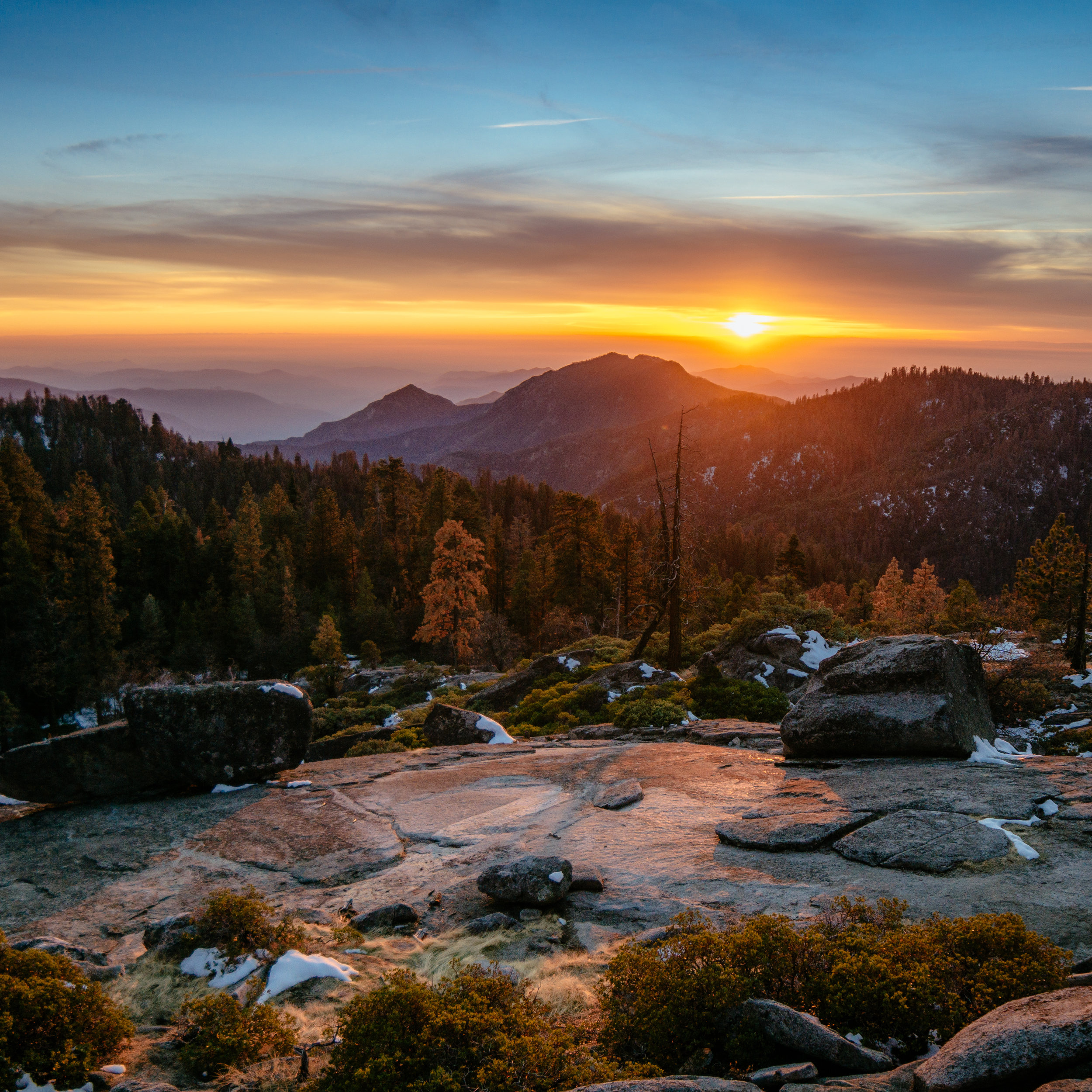 Sequoia Sunset.jpg