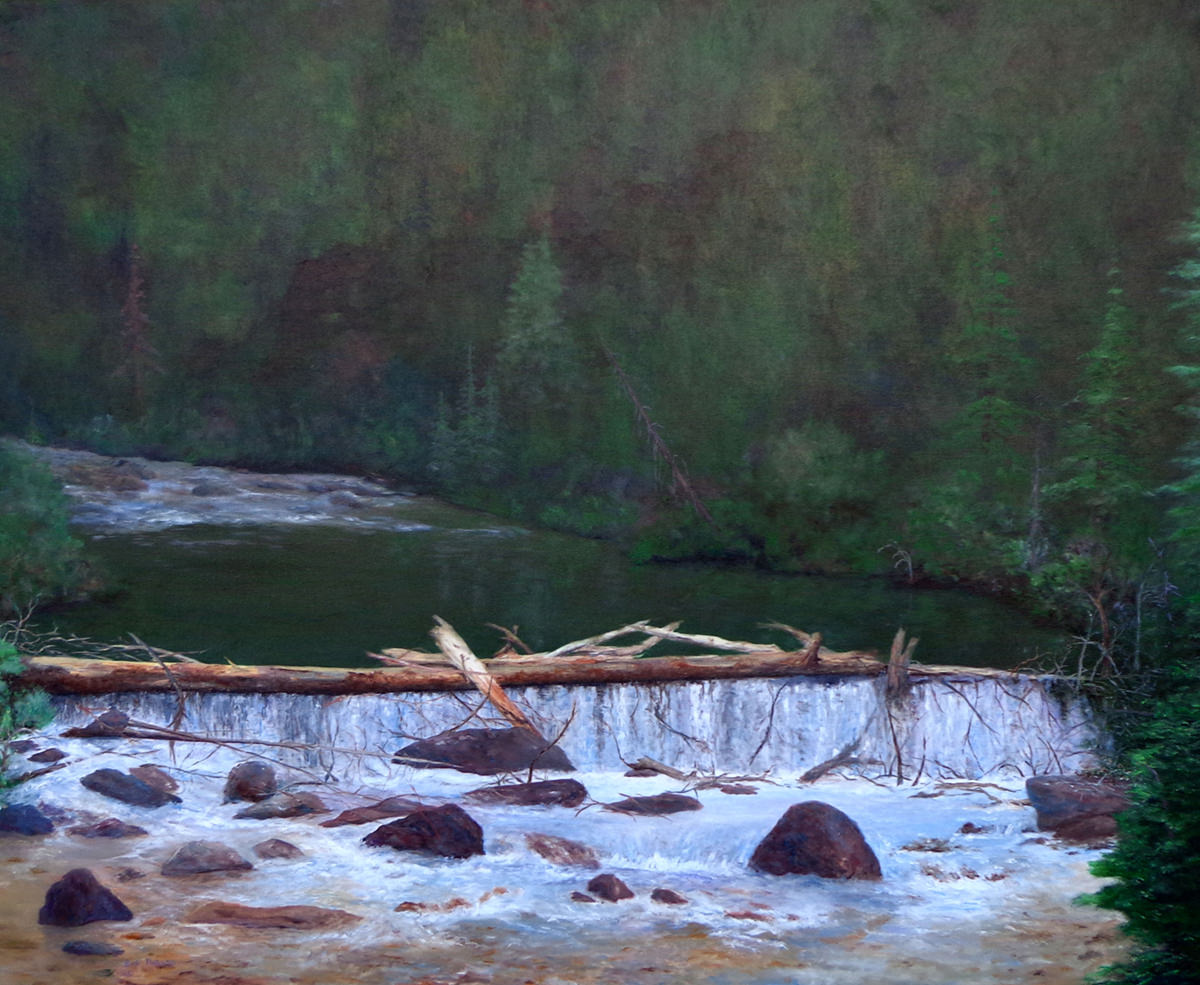 Beaver Pond on Spring Creek