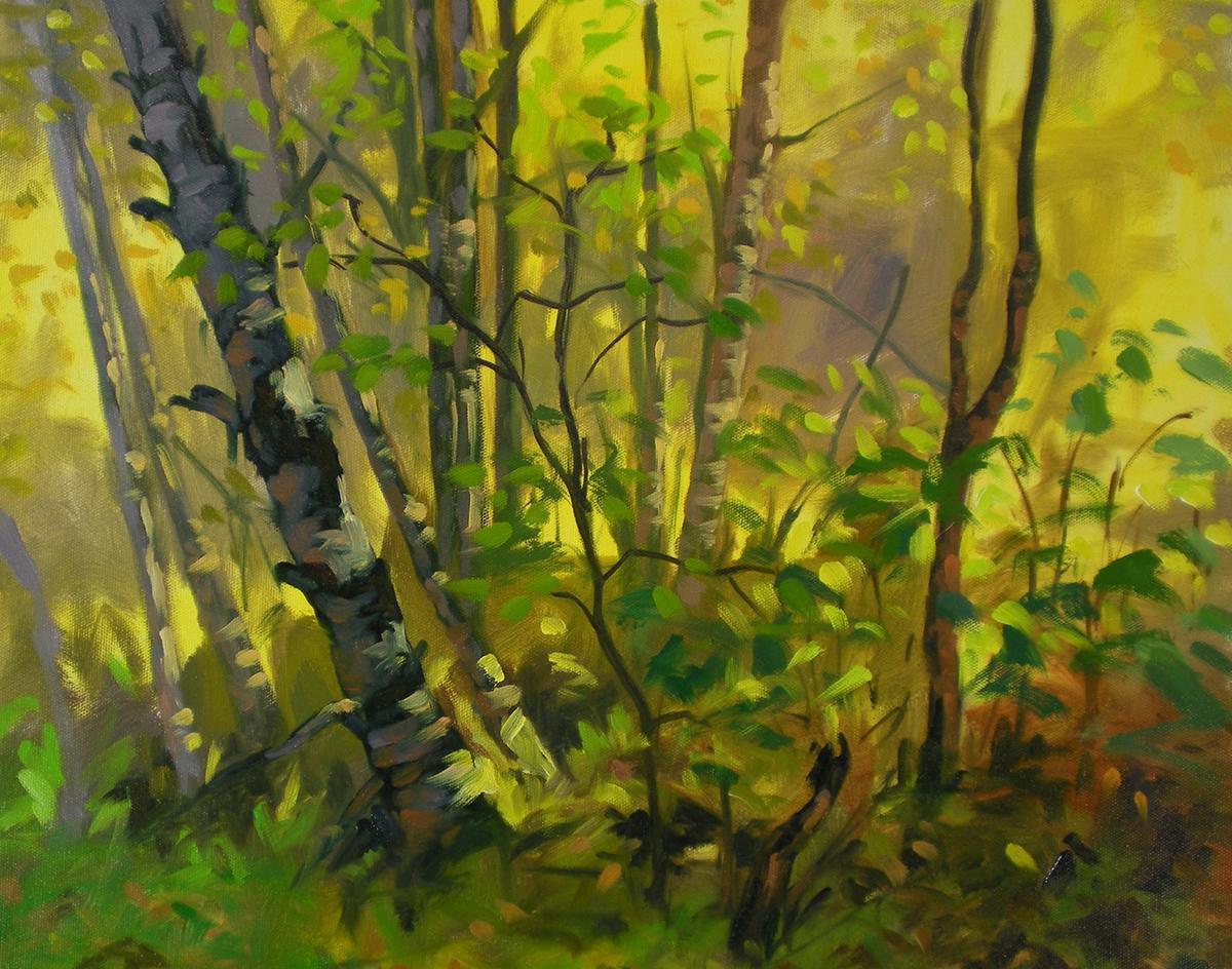 Birch Grove, East Talkeetna