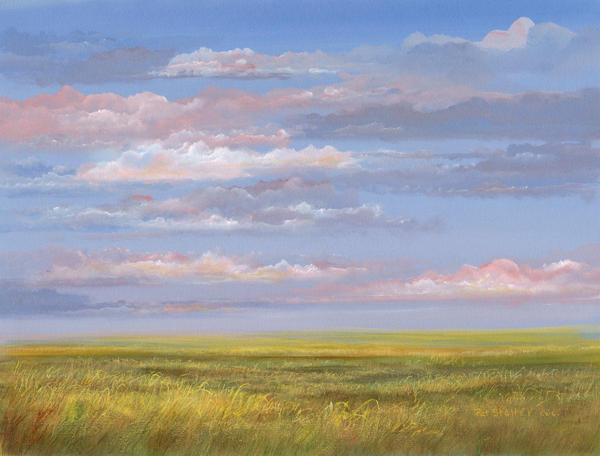 Prairie Shadows