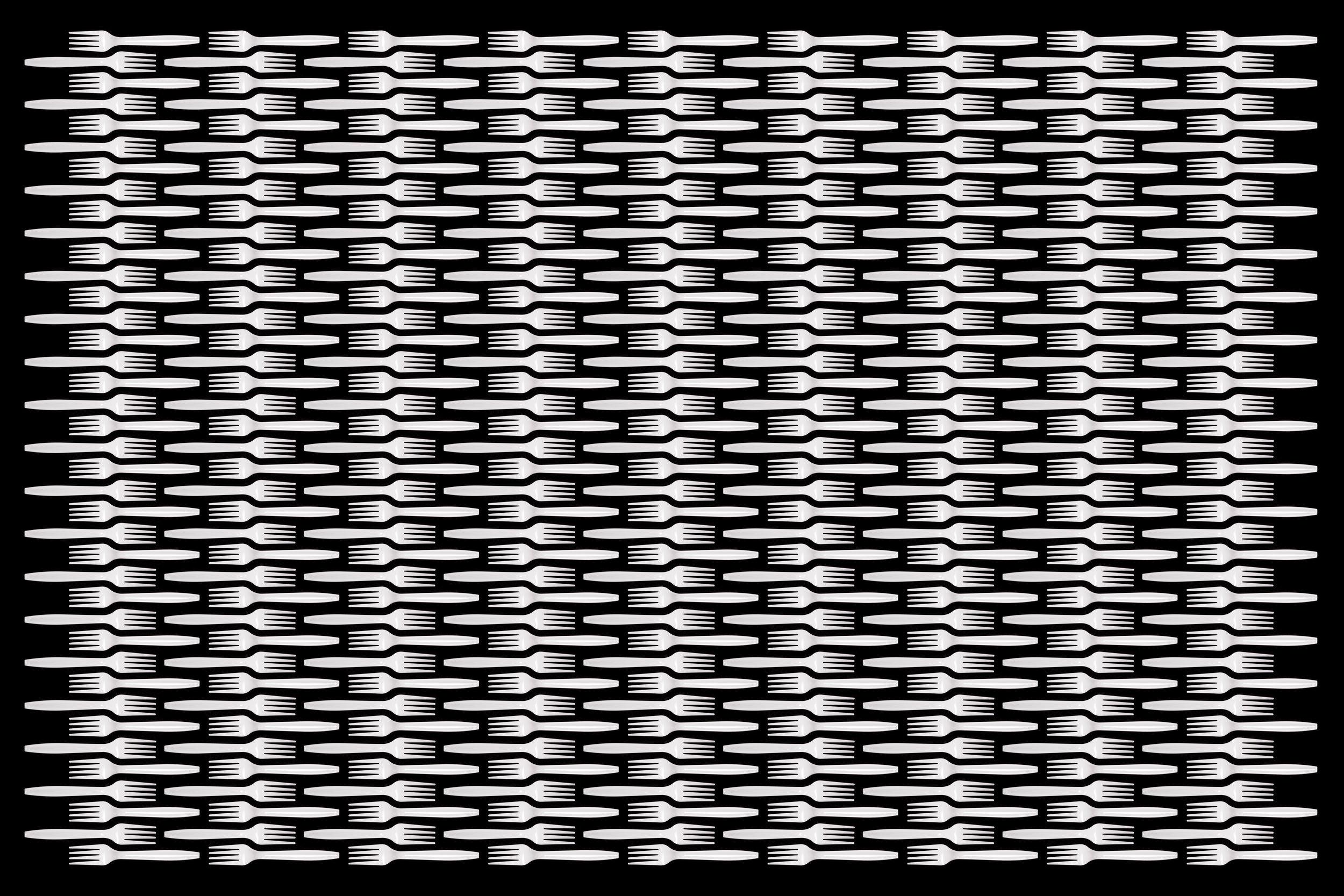 Reproduction_06.jpg