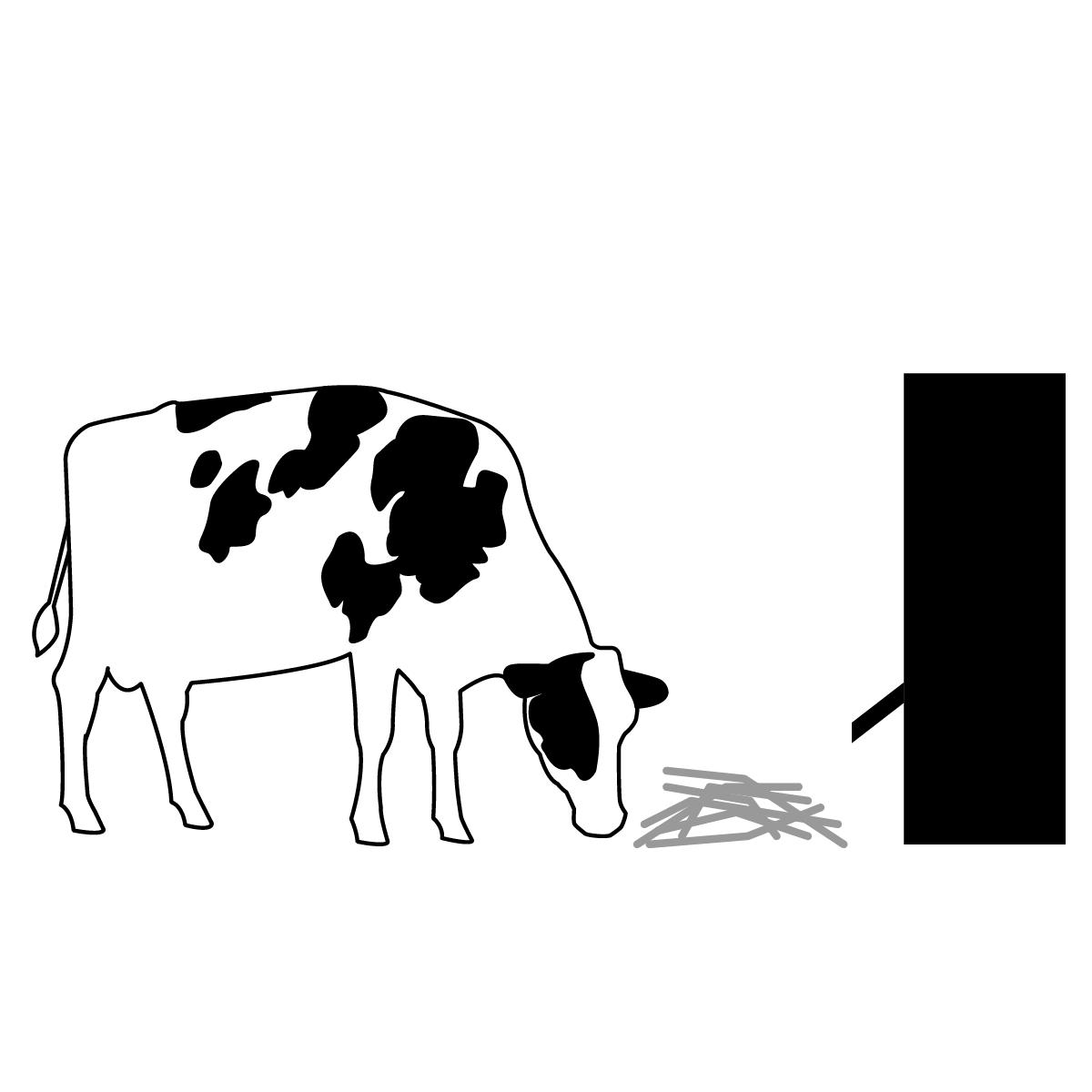 Dairy Feeders