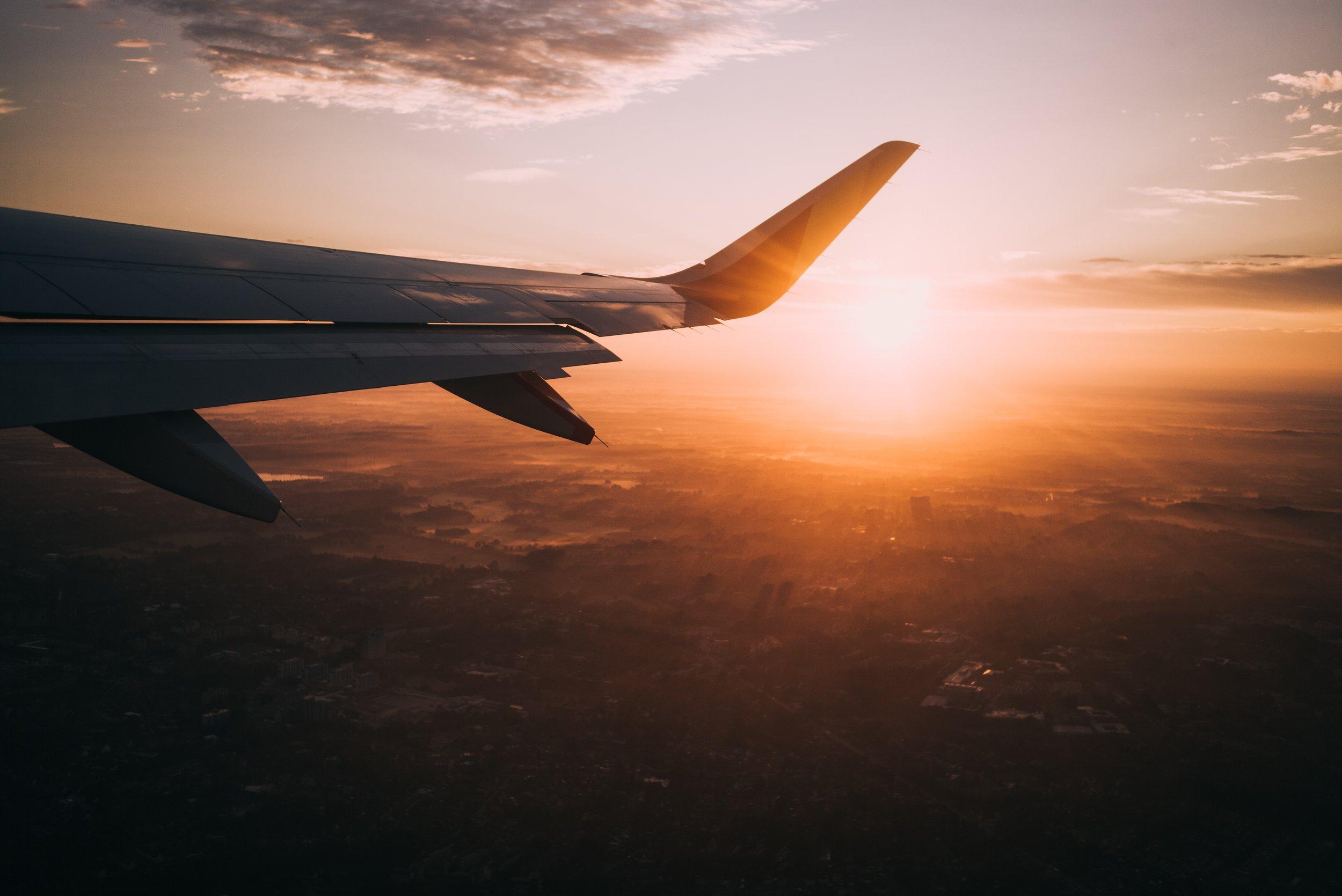 Fly_05.jpg