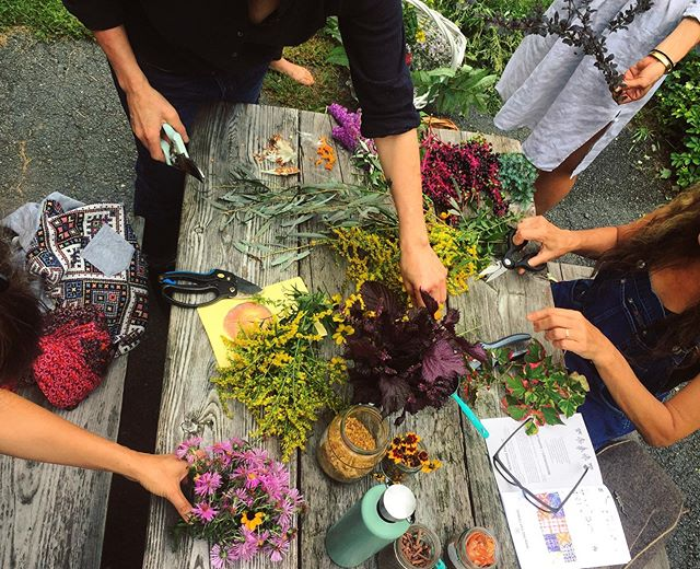 """The scene from one of last summers natural dye workshops, surrounded by healers and designers and naturalists and writers AND even the woman who illustrated one of my favorite books on herbalism. 🌼🌸🌼🌸🌼🌸🌼 Every time I lead a workshop, I go through this phase of """"why me? who am I to tell others what to do? I don't know a thing! I'm still learning all this myself..."""" especially in a region where I tend to be younger than most of the participants, and then my mouth opens and the part of my brain that doubts myself is forced to step aside as years of knowledge and experience make their way to the forefront. I do not know everything about natural dyes. I do not have answers to all your questions. 🌱🌱🌱🌱🌱🌱🌱 But - I have been making clothes and dyeing them for my entire life, and I am completely obsessed with the field, a study that moved me across the country and then uprooted me again and brought me into the wild, giving up six months of the year to the blanket of snow in exchange for a lively community of artists and being able to afford to live on enough land to grow things on. 🌝🌝🌝🌝🌝🌝🌝 All this to say... I'm having a Full Moon Dye Workshop in my backyard next month!! Friday September 13th, check out the linx in my profile for more and to get yourself immersed in some plant dyes!! 🌿"""