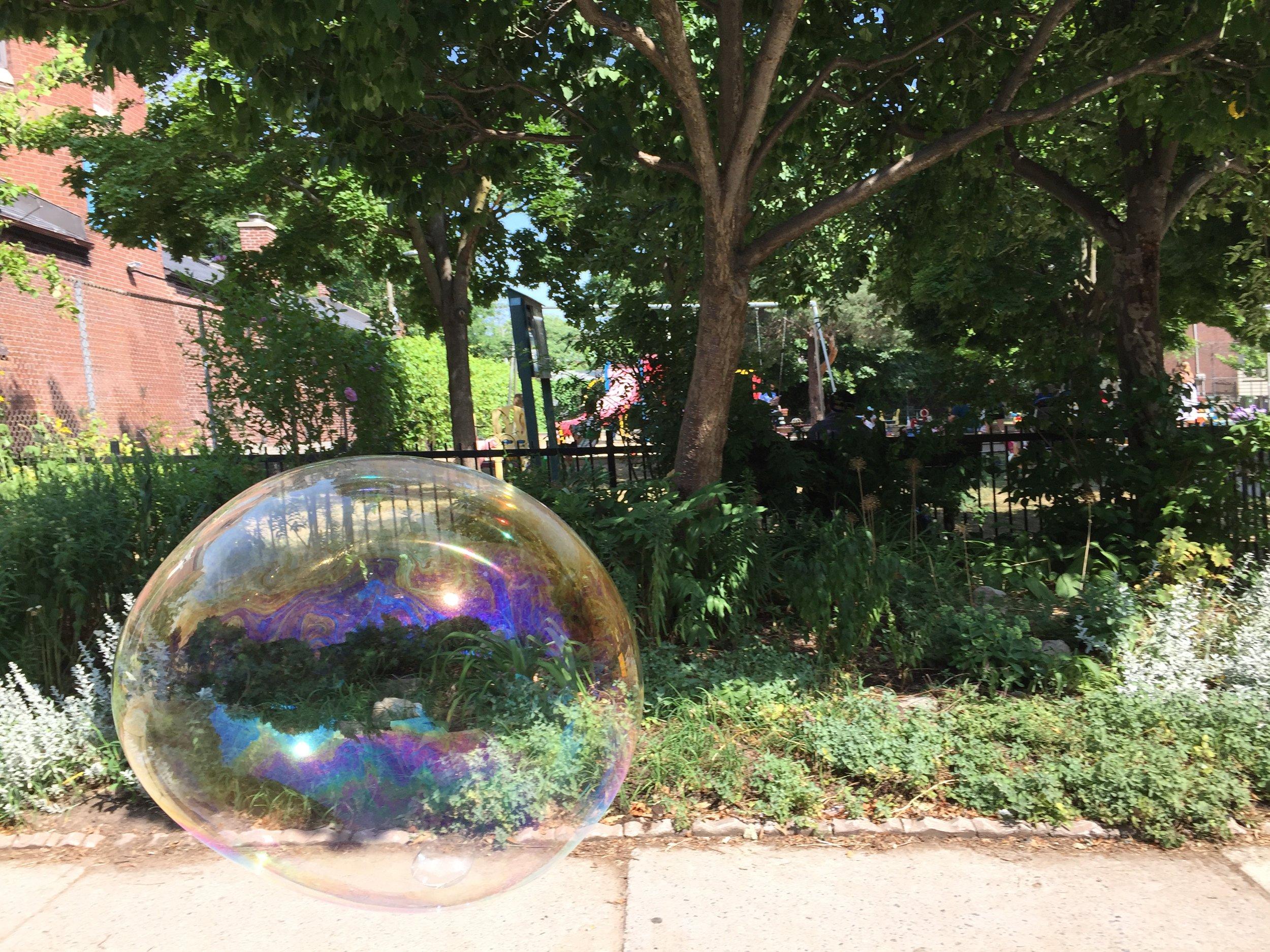 Bubble magic.JPG