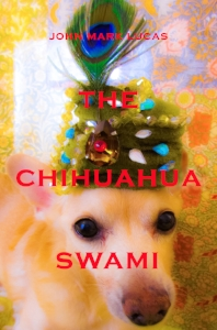 The Chihuahua Swami