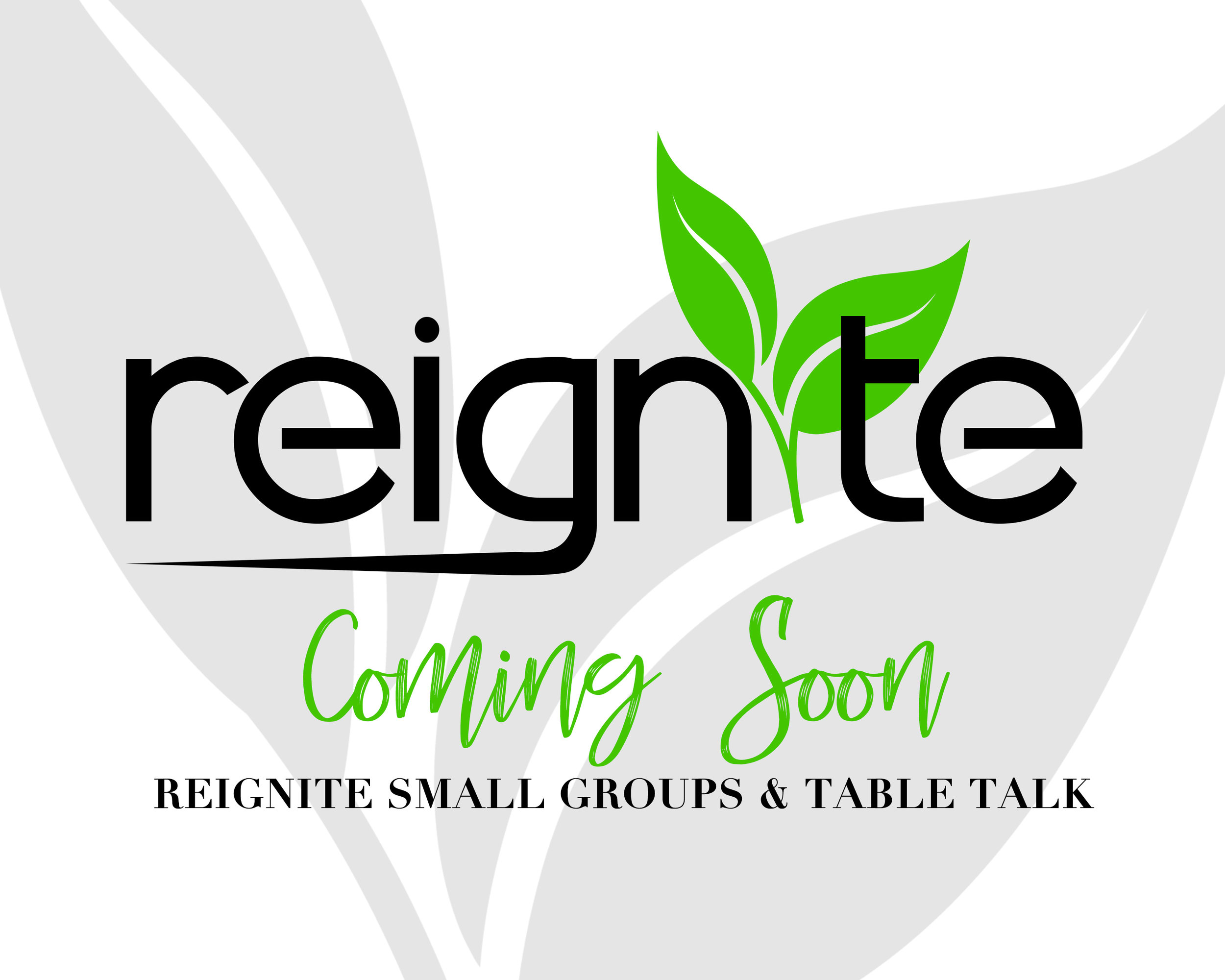Reignite - Small Group & Table Promo - Reignite.jpg