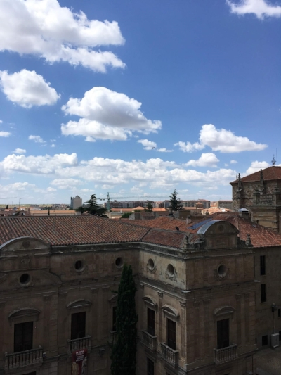 (Picture credit- me: the view from the cathedral)