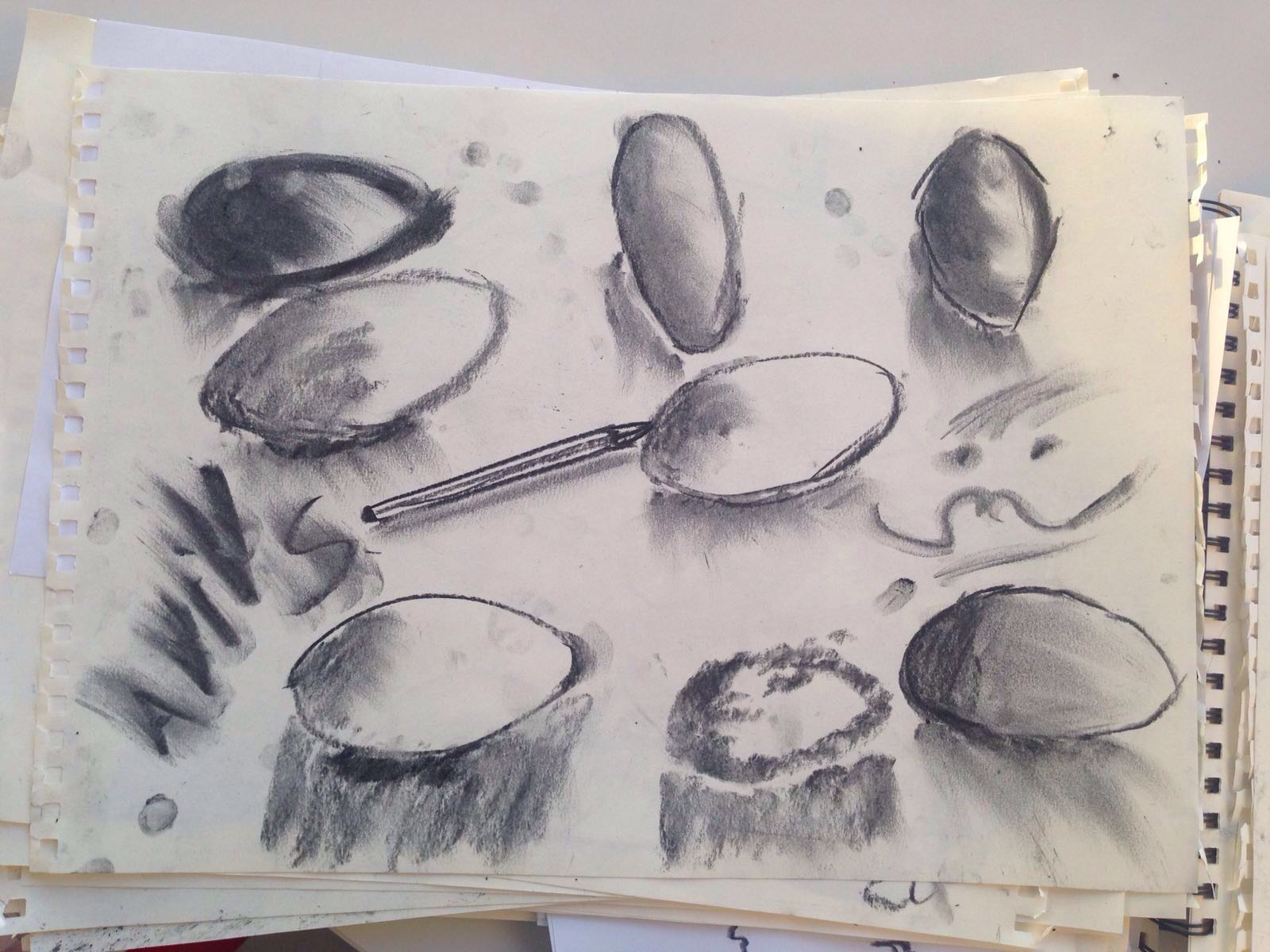 // Charcoal sketches of an egg