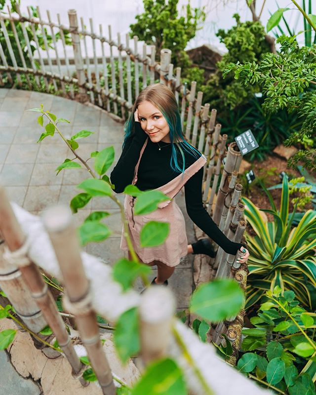 plants on plants on plants 🌱