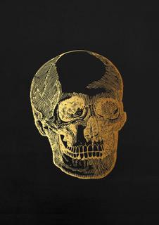 anatomy head black A4.jpeg