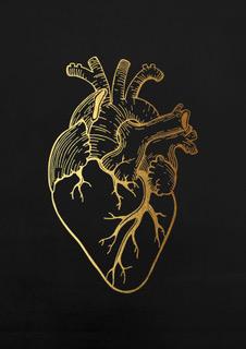 anatomy heart black A4.jpeg