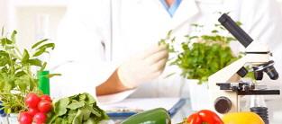 GMO-and-health.jpg