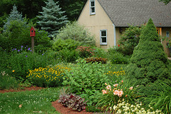 Landscaping_a_large_property-_summer_view.jpg