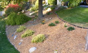 Plants-for-a-Hill-or-Slope-by-Midwest Gardening.jpg