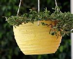 Ceramic-hanging-basket-by-malyousif.jpg