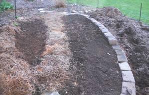Straw Mulch in the garden.jpg