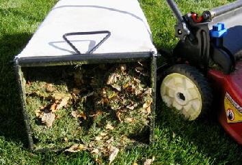 Mulching-Mower by Midwest Gardening.jpg