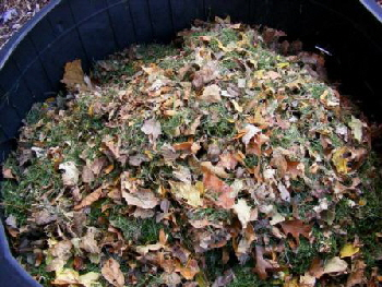 Mulched-Mowing-Mix-for-Compost by Midwest Gardening.jpg