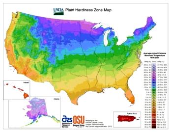 USDA-plant-hardiness-zones.jpg