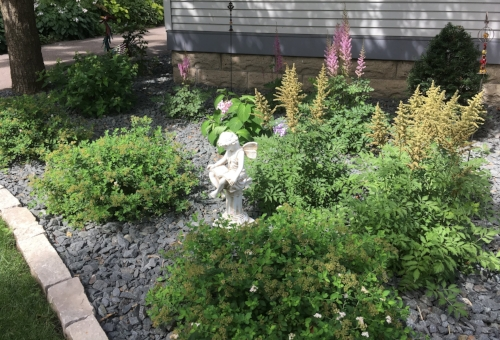 Third year leap by Midwest Gardening