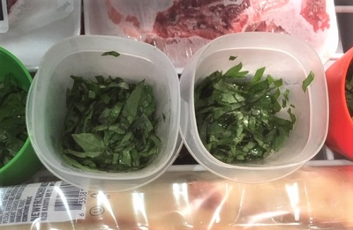 Freeze the Basil by Midwest Gardening