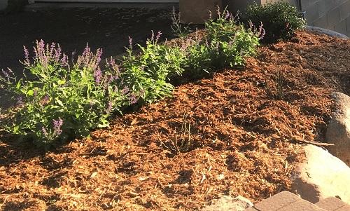 Summer Mulch by Midwest Gardening.jpg