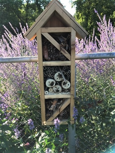 Small Bee House by Midwest Gardening.JPG