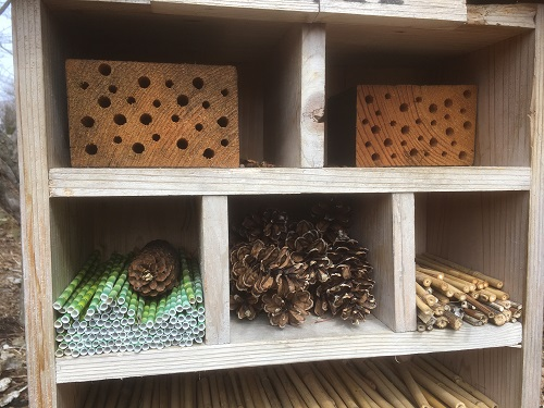 Bee House rooms by Midwest Gardening.JPG
